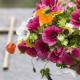 Servicios de asistencia funeraria - Quality Assist © 4